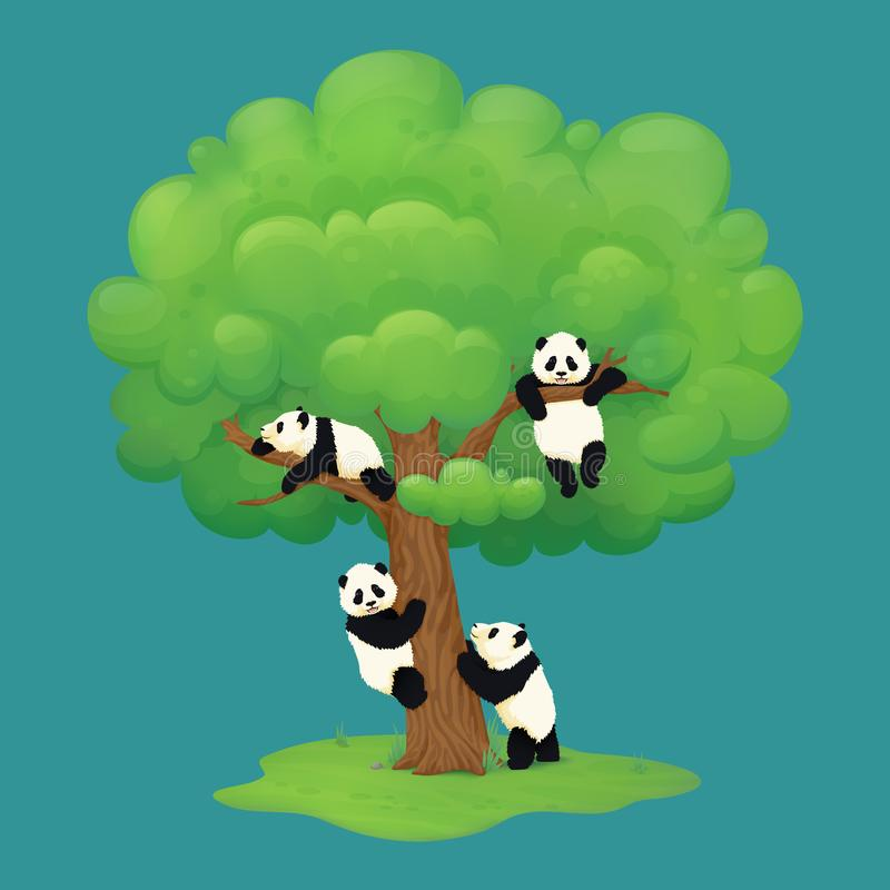 Adorable giant panda cubs climbing a tree, hanging from the branch, resting on a bough and standing on hind legs near the trunk. Black and white chinese bears vector illustration