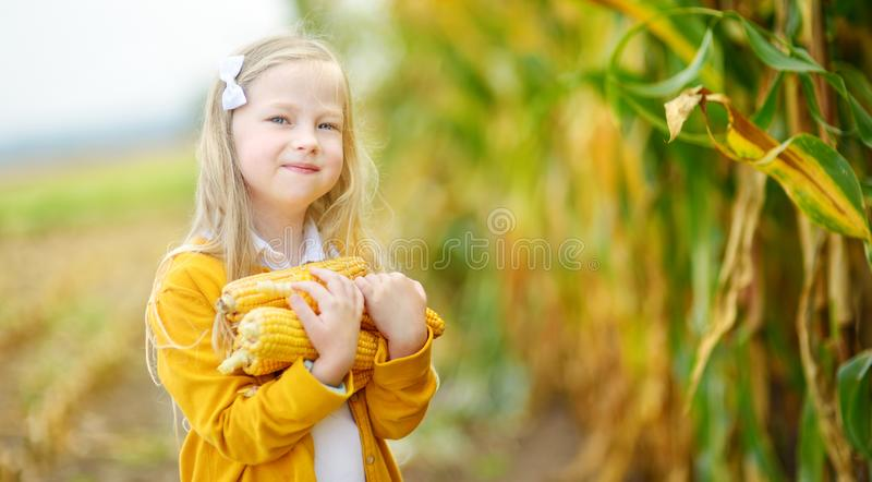 Adorable girl playing in a corn field on beautiful autumn day. Pretty child holding a cob of corn. Harvesting with kids. royalty free stock photography