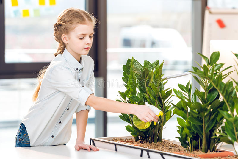 Adorable girl watering green plants in office royalty free stock photos
