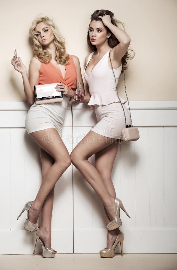 Adorable girlfriends posing against to the wall royalty free stock images