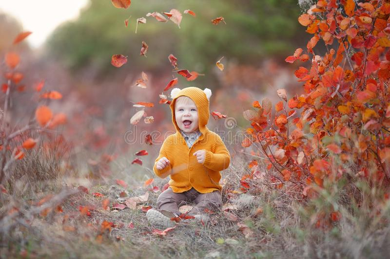 Little boy alone sits on dry grass in a beautiful autumn park on a background of red foliage. Adorable kid having fun on beautiful autumn day. Happy child royalty free stock photo