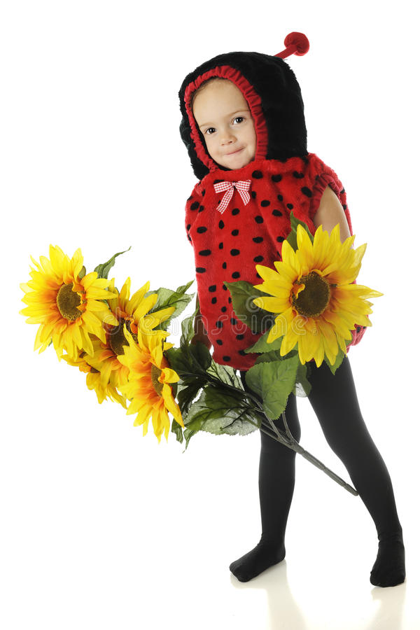 Download Adorable Ladybug stock image. Image of preschooler, flowers - 27432285