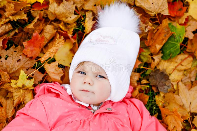 Adorable little baby girl in autumn park on cold october day with oak and maple leaf. Fall foliage. Family outdoor fun royalty free stock images