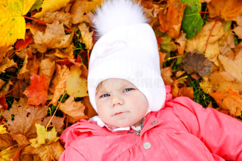 Adorable little baby girl in autumn park on cold october day with oak and maple leaf. Fall foliage. Family outdoor fun royalty free stock photos