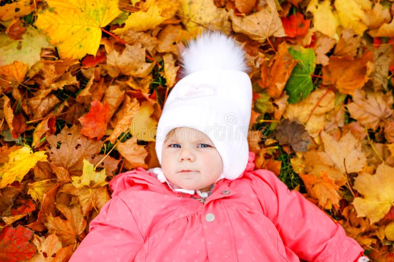 Adorable little baby girl in autumn park on cold october day with oak and maple leaf. Fall foliage. Family outdoor fun. In fall. child smiling. Healthy baby royalty free stock images