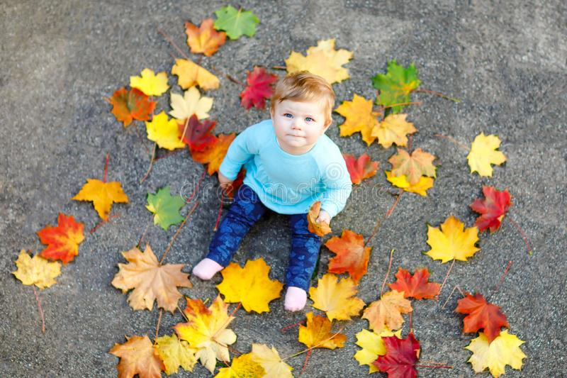 Adorable little baby girl in autumn park on sunny warm october day with oak and maple leaf. Fall foliage. Family outdoor royalty free stock photos