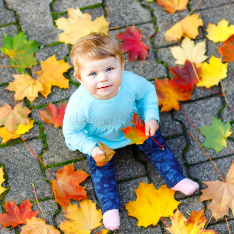 Adorable little baby girl in autumn park on sunny warm october day with oak and maple leaf. Fall foliage. Family outdoor. Fun in fall. child smiling. Baby royalty free stock photo