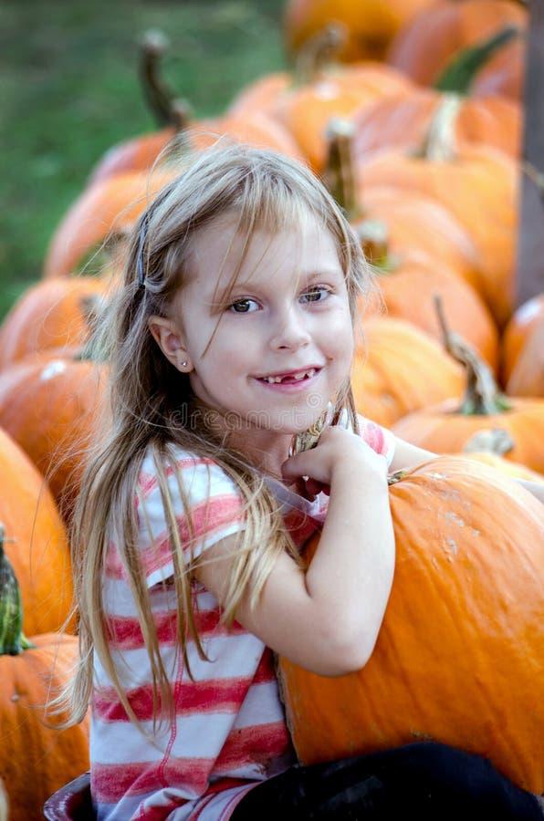 Adorable blond girl picks a pumpkin stock photos