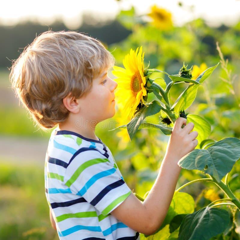 Free Adorable Little Blond Kid Boy On Summer Sunflower Field Outdoors. Cute Preschool Child Having Fun On Warm Summer Evening Royalty Free Stock Images - 163183249
