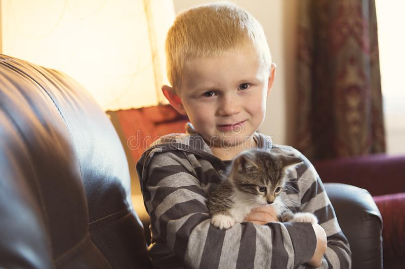Adorable little boy with cute cat on sofa. An adorable little boy with cute cat on sofa stock photos