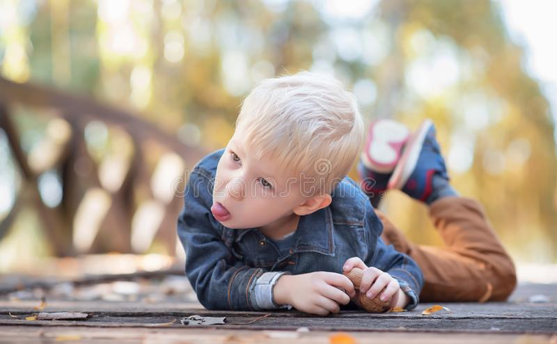 Adorable little boy on the wooden bridge. In the nature royalty free stock photo