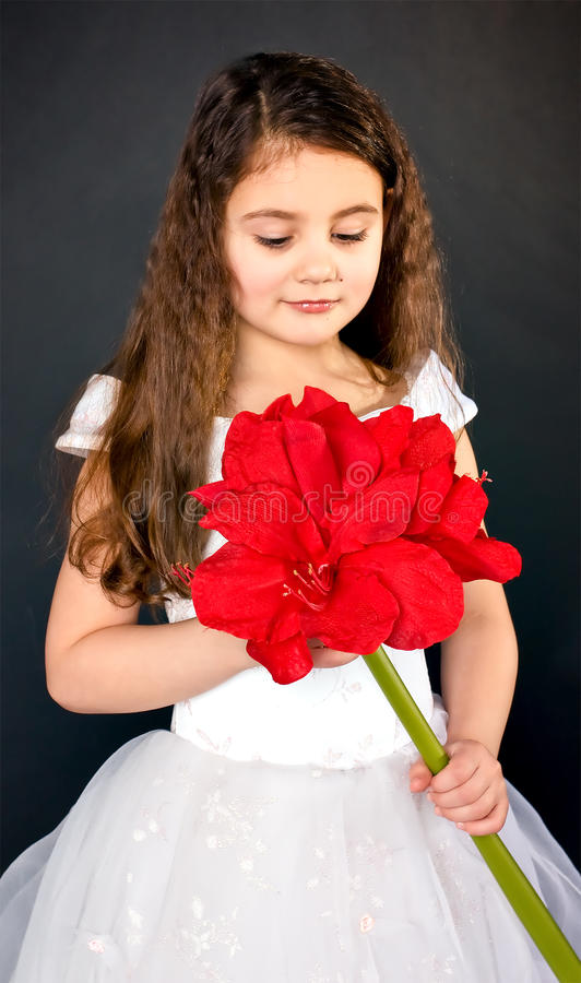 Adorable little girl royalty free stock image