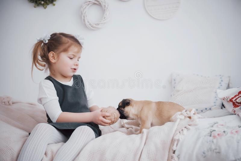 Adorable little girl feeding cute pug. She bought a puppy. the best friend stock image