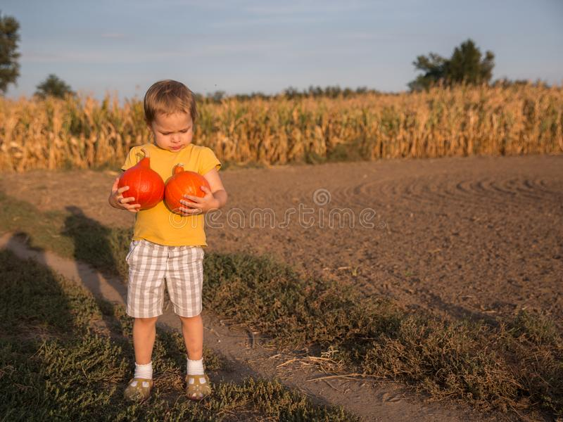 Adorable little girl holding two small pumpkins on the field stock photos