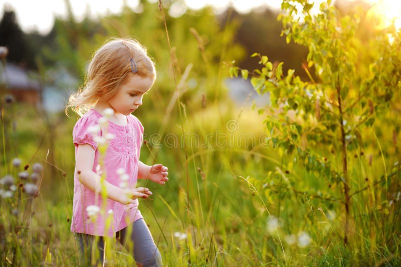 Download Adorable Little Girl In A Meadow Stock Photo - Image of flowers, harmony: 20565866