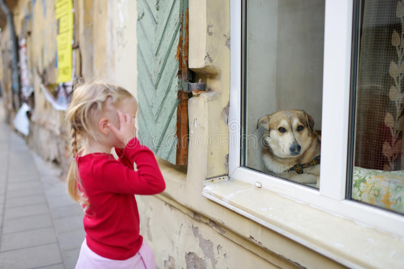 Adorable little girl met friendly dog behind a window royalty free stock photos