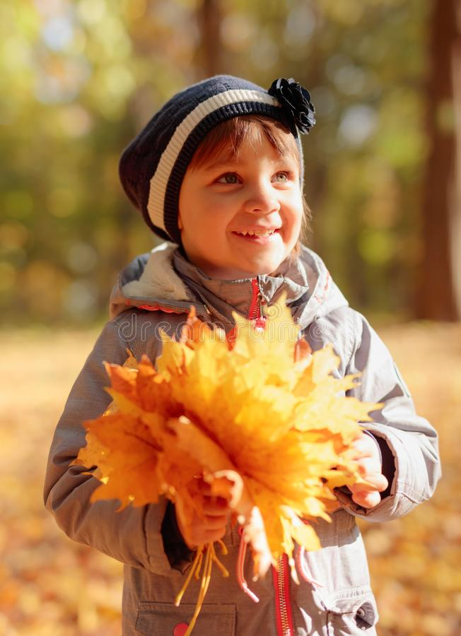 Adorable little girl outdoors at beautiful autumn day royalty free stock photos