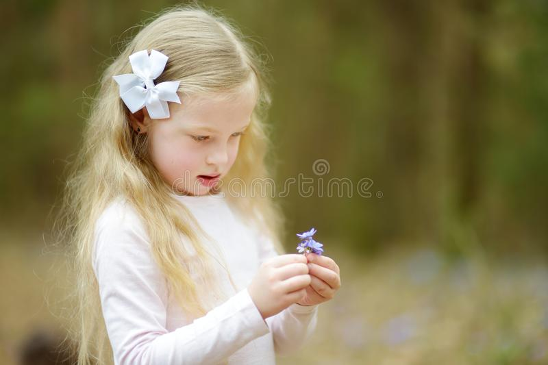 Adorable little girl picking the first flowers of spring in the woods on beautiful sunny spring day royalty free stock images
