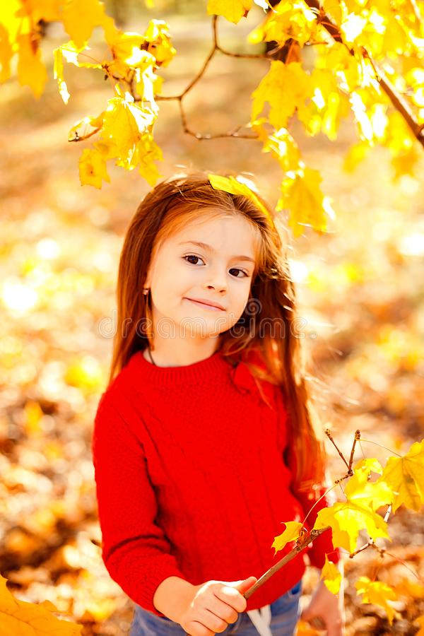 Adorable little girl playing with autumn leaves royalty free stock images