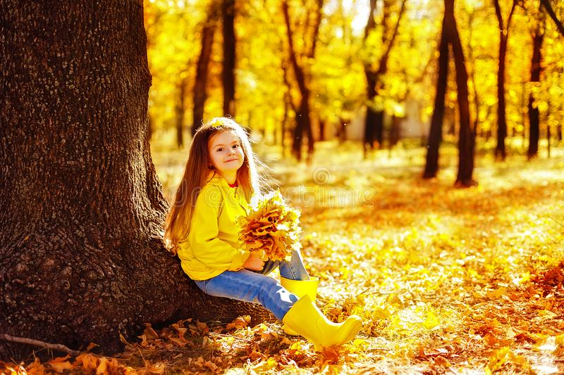 Adorable little girl playing with autumn leaves royalty free stock image