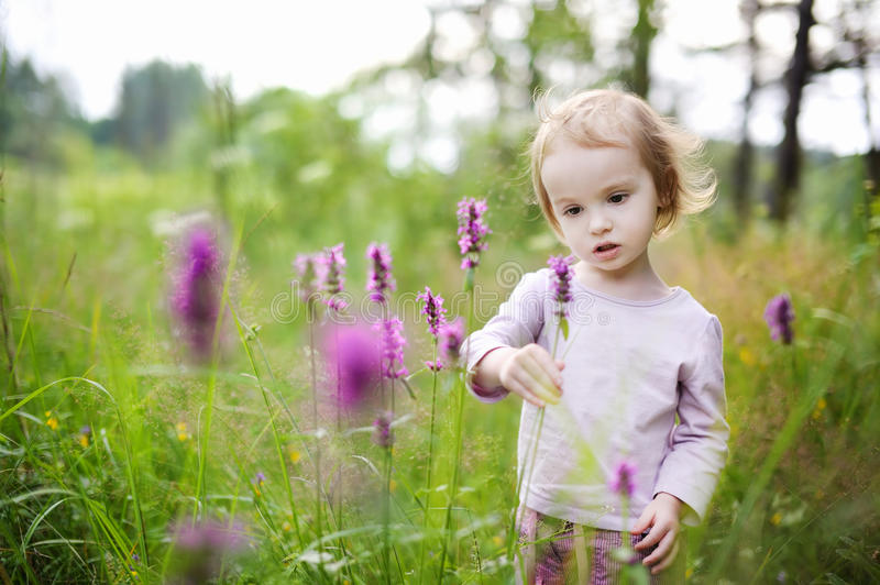Adorable little girl sniffing flowers outdoors royalty free stock image
