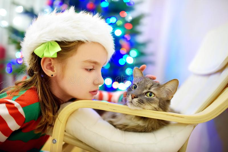 Adorable little girl stroking her cat on Christmas day. Spending time with family and pets on Christmas. Celebrating Xmas at home royalty free stock photography