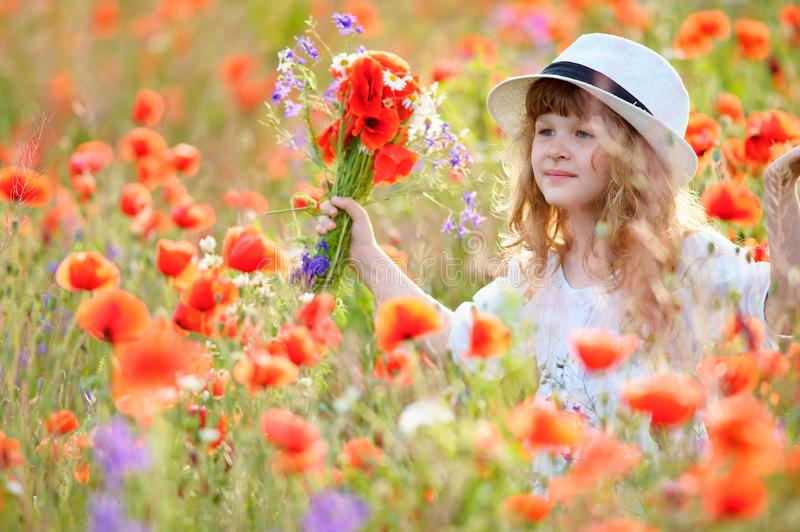 Adorable little girl in white dress playing in poppy flower field. Child picking red poppies. Toddler kid having fun in summer me stock photography