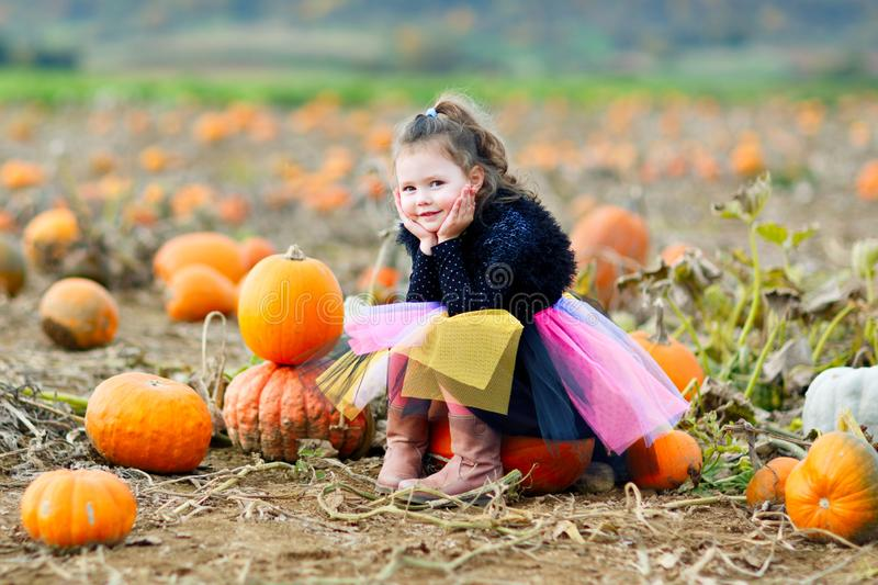 Adorable little kid girl having fun on pumpkin patch farm. Traditional family festival with children, thanksgiving and royalty free stock photos
