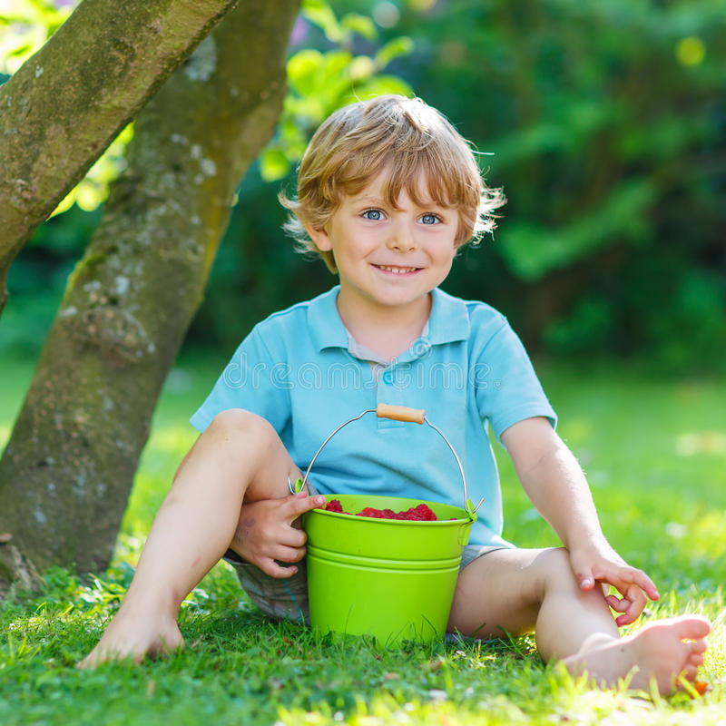 Adorable little preschool kid boy eating raspberries in home's g. Cute little preschool kid boy eating raspberries in home's garden, outdoors. Sitting on ground royalty free stock photo
