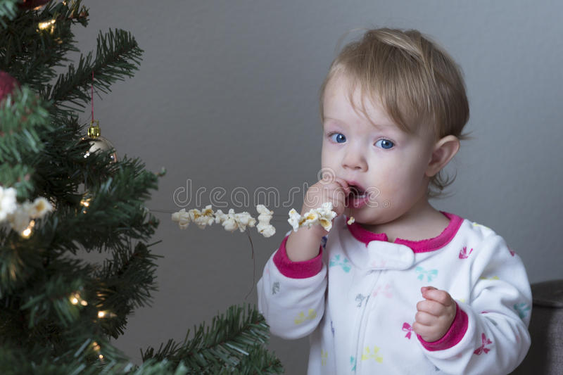 Adorable moments. Baby girl decides to eat the popcorn off the tree instead of using it as a decoration