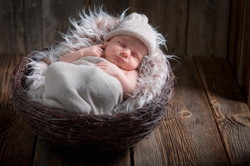 Adorable newborn baby sleeping in the basket with blanket royalty free stock image