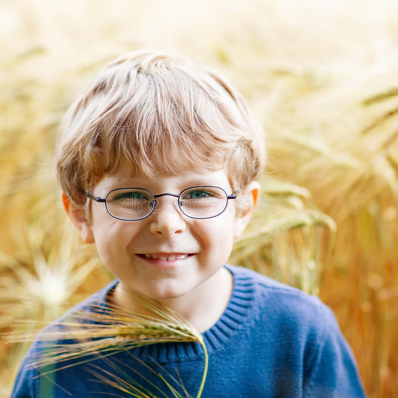 Adorable preschooler kid boy with glasses in wheat field. Adorable preschooler kid boy with glasses walking happily in wheat field on warm and sunny summer day stock photo