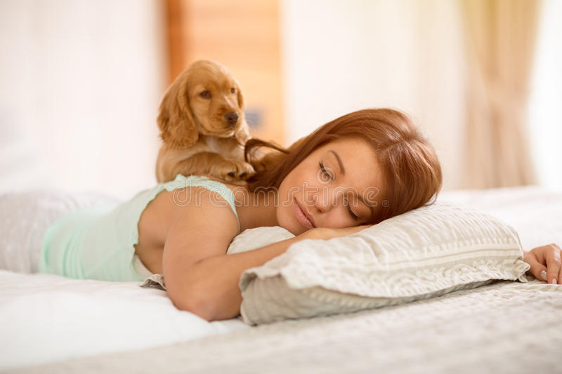 Adorable puppy wake young girl in the morning. Adorable puppy wake from sleep young girl at morning stock images