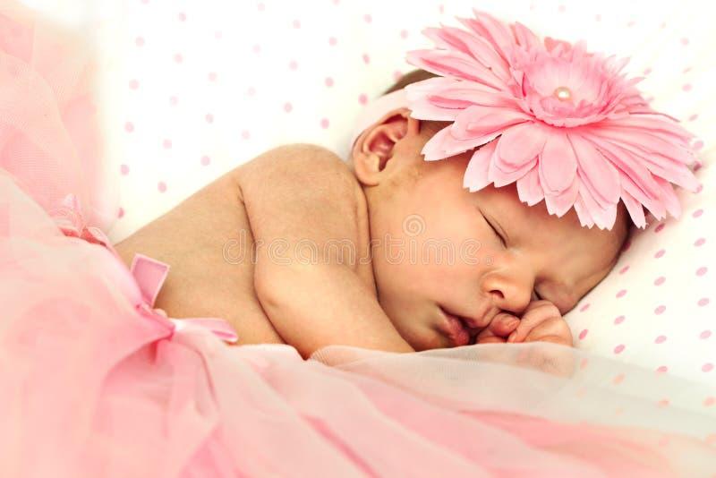 Adorable sleeping newborn baby girl stock image