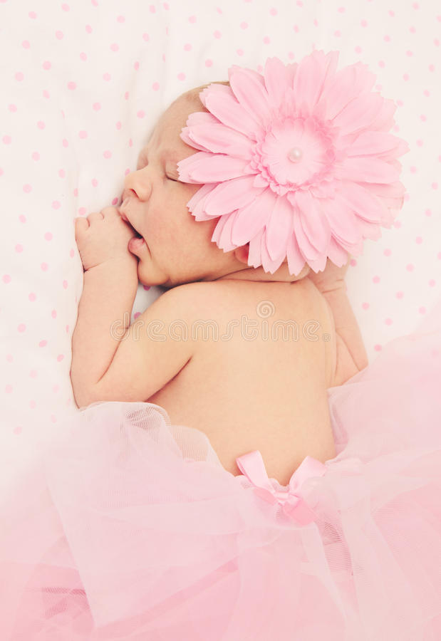 Download Adorable Sleeping Newborn Baby Girl Stock Photo - Image: 24570956