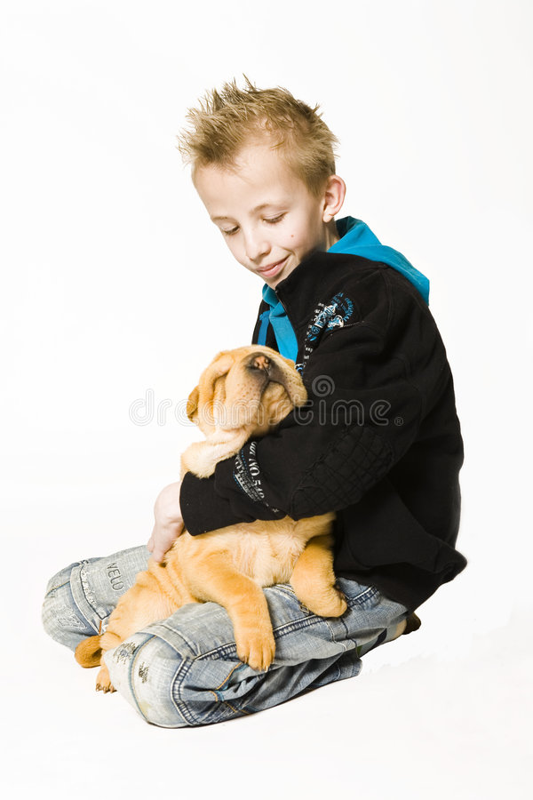 Download Adorable sleeping puppy stock image. Image of protecting - 2317915