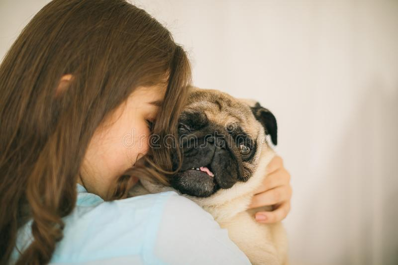 Adorable small dog. Human love and trust. Woman holding dog stock photography
