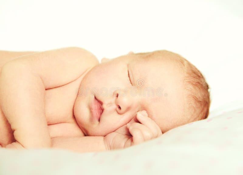 Adorable tightly sleeping newborn baby girl royalty free stock photography