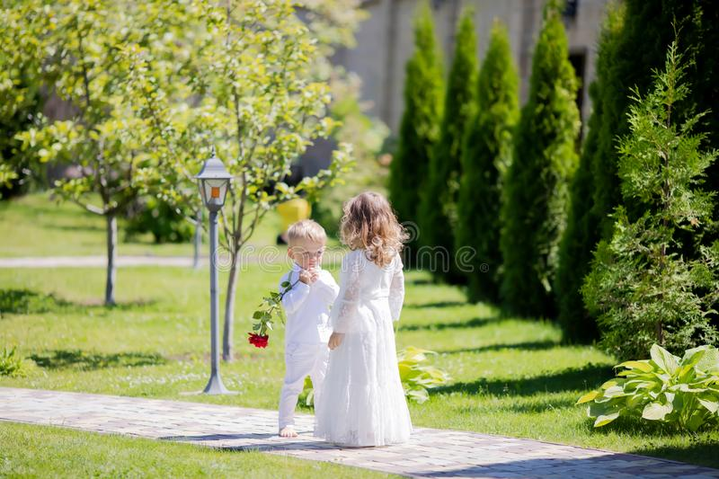 Adorable toddler boy and girl in angel costumes sitting together, boy giving red rose to the girl stock photo