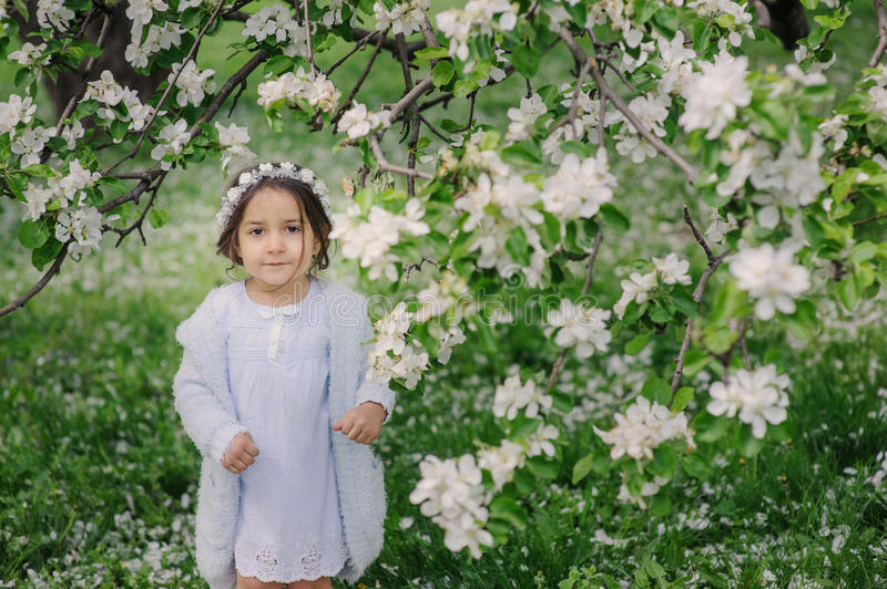 Adorable toddler child girl in light blue dressy outfit walking and playing in blooming spring garden. Adorable toddler child girl in light blue dressy outfit royalty free stock photography