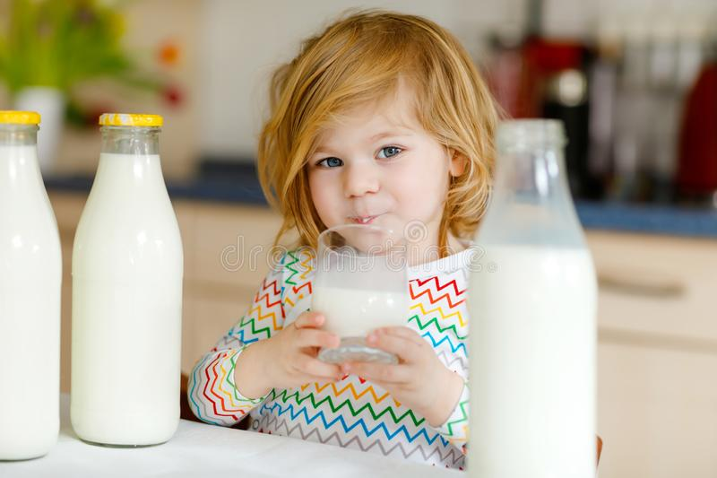 Adorable toddler girl drinking cow milk for breakfast. Cute baby daughter with lots of bottles. Healthy child having. Milk as health calcium source. Kid at home royalty free stock photos