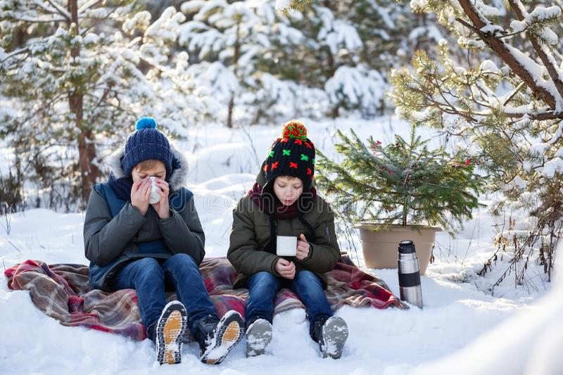 Adorable two brothers sitting on plaid and drinking chocolate or hot tea in sunny winter day royalty free stock photos