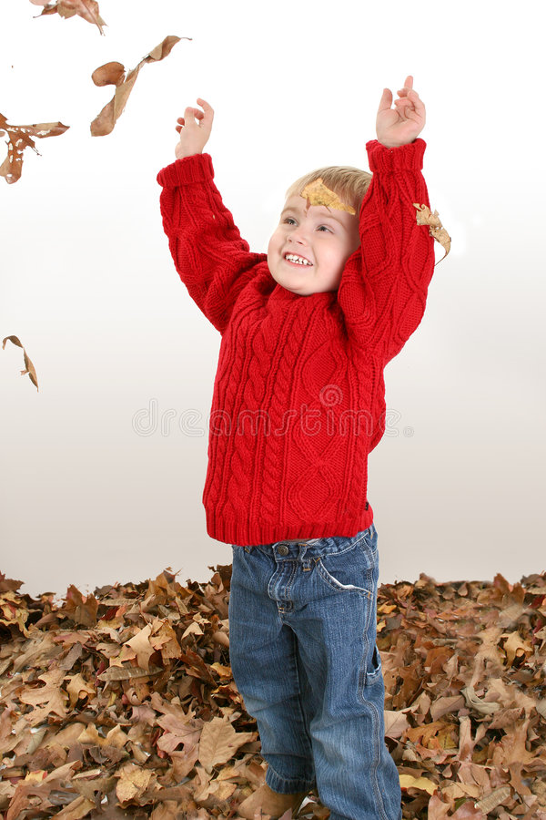 Free Adorable Two Year Old Playing In Leaves Stock Image - 392161