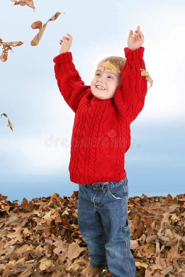 Free Adorable Two Year Old Playing In Leaves Royalty Free Stock Image - 393856