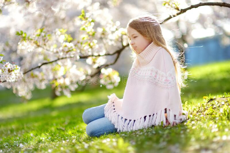 Adorable young girl in blooming cherry tree garden on beautiful spring day. Cute child picking fresh cherry tree flowers at spring. Kid exploring nature royalty free stock images