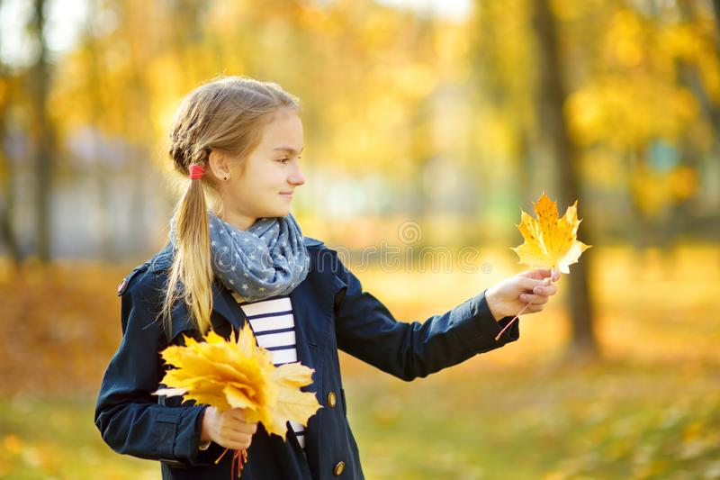 Adorable young girl having fun on beautiful autumn day. Happy child playing in autumn park. Kid gathering yellow fall foliage stock photo