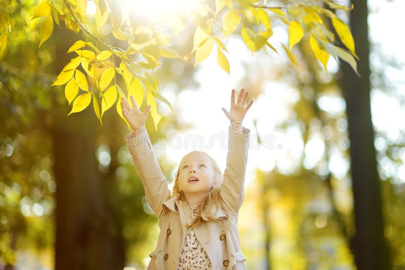 Adorable young girl having fun on beautiful autumn day. Happy child playing in autumn park. Kid gathering yellow fall foliage stock photos