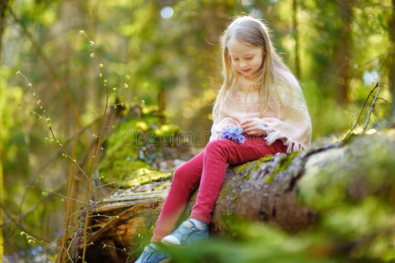 Adorable young girl picking the first flowers of spring in the woods on beautiful sunny spring day. Cute child having fun outdoors. Kid exploring nature stock photo