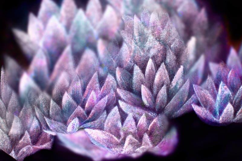 Adoucissez le collage rayonnant de modèle, peint à la main et d'ordinateur de fond de fleur de lotus photos stock