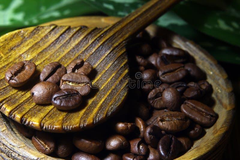 Adra kawa w drewnianej łyżce, zbliżenie na fasolach kawa, na drewno stołu teksturze fotografia royalty free